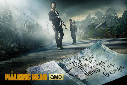 Poster The Walking Dead 132662