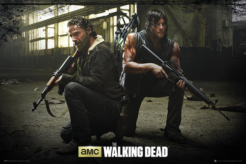 Poster The Walking Dead 133064