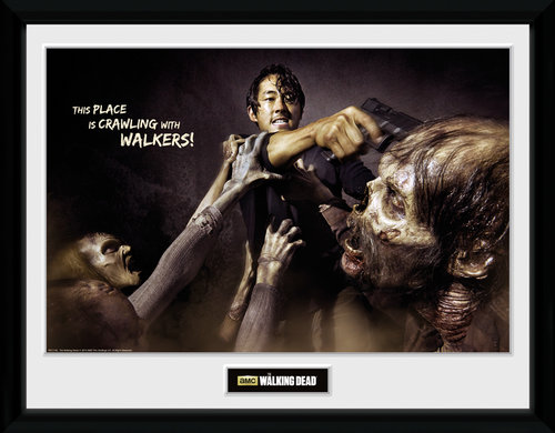 Poster The Walking Dead 137088