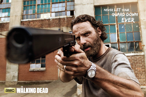 Poster The Walking Dead 137091