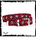 Ceinture Queen of Darkness 138531