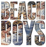 Vinyle Beach Boys (The) - The Beach Boys