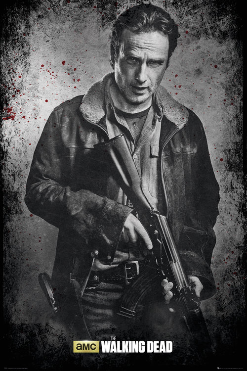 Poster The Walking Dead 177456