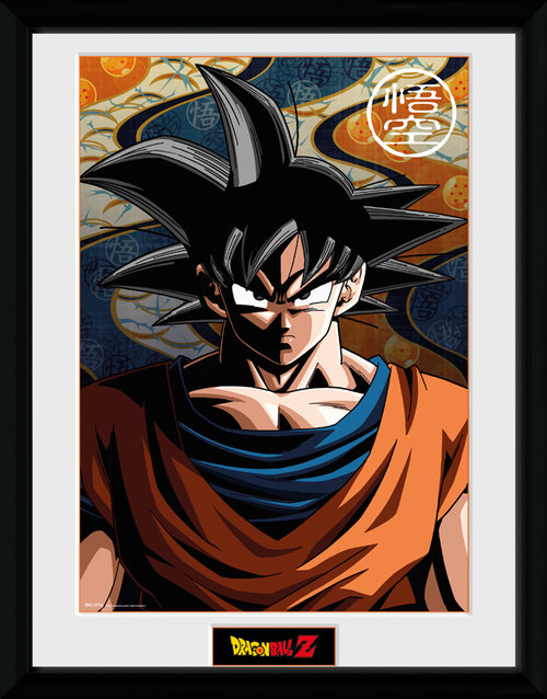 Image Encadrée Dragon ball Z collector