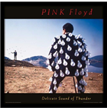 Couverture d'Album Encadrée Pink Floyd - Delicate Sound Of Thunder