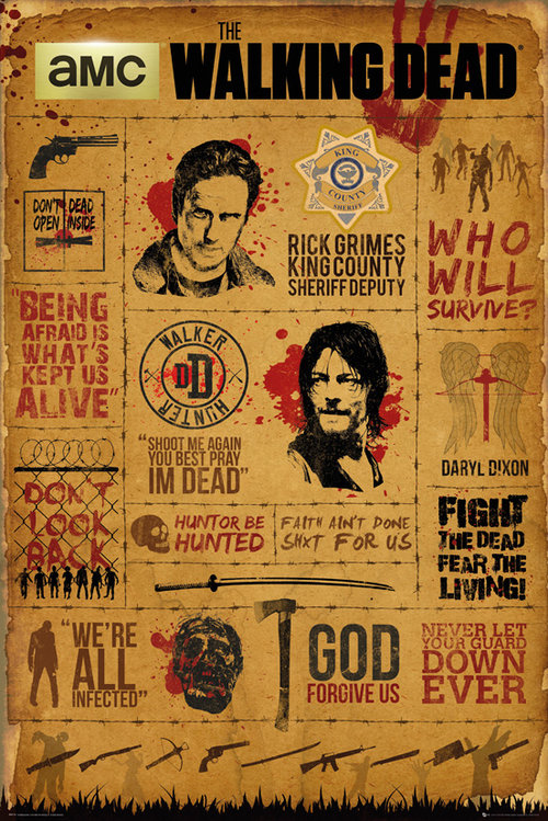 Poster The Walking Dead 208262