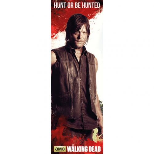 Poster The Walking Dead - Daryl 315