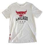 T-shirt Chicago Bulls  247618