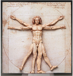 The Table Museum Figurine Figma Vitruvian Man 16 cm