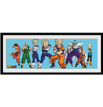Imprimé Dragon ball 253256