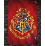Poster Harry Potter  254207