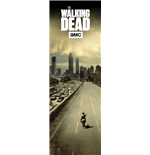 Poster The Walking Dead 254440