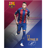 Poster FC Barcelone 254614