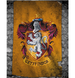 Poster Harry Potter  254793