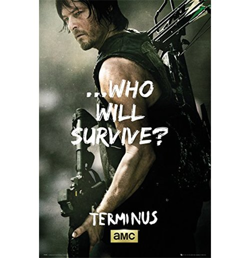 Poster The Walking Dead 255245