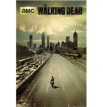 Poster The Walking Dead 255246