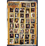 Poster Harry Potter  255303