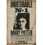Poster Harry Potter - Undesirable No.1