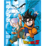 Poster Dragon ball 255311