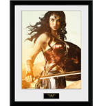Imprimé Wonder Woman 260049