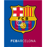 Poster FC Barcelone 262852