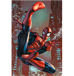 Poster Spiderman 265600