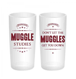 Verre Harry Potter  266331