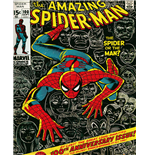 Poster Spiderman 271595