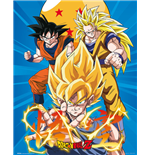 Poster Dragon ball 272369