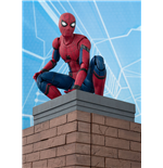 Spider-Man Homecoming figurine S.H. Figuarts Spider-Man & Tamashii Option Act Wall 15 cm