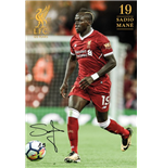 Poster Liverpool FC 285122