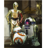 Poster Star Wars 286475