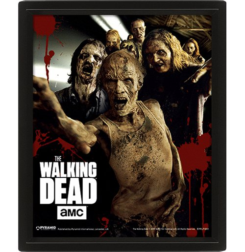 Poster The Walking Dead 290555