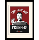 Photo Encadrée Big Bang Theory - Live Long And Prosper