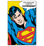 Poster Superman 311557
