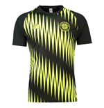 T-shirt Celtic 2018-2019 (Noir)