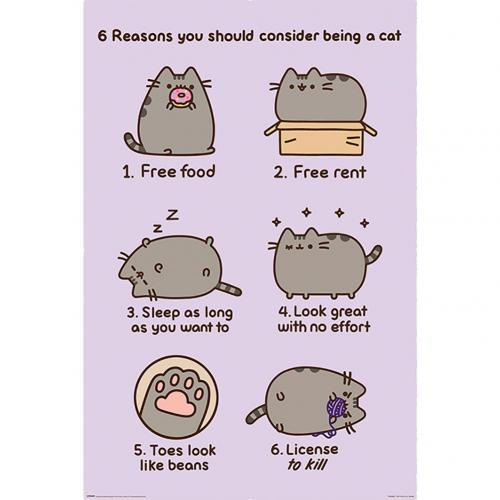 Poster Pusheen - Reasons