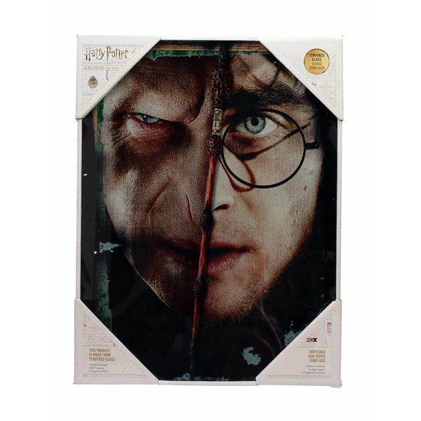 Poster Hp Half Face HARRY&VOLDEMORT Glass Poste