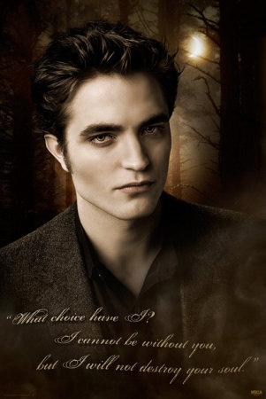 Poster Twilight - Edward Details