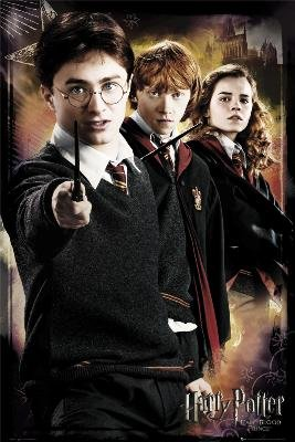 Poster Harry Potter  70206